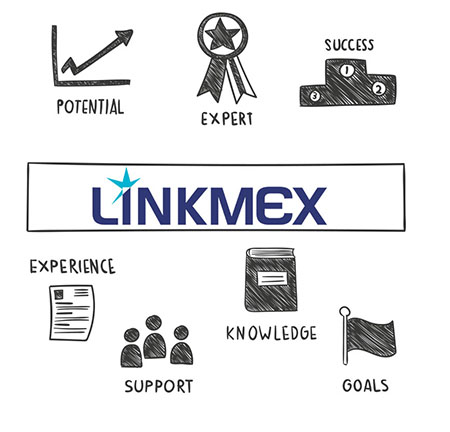 consultoria Linkmex para start up