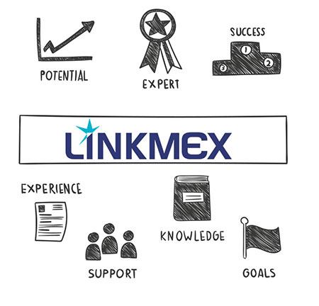 consultoria Linkmex para start up